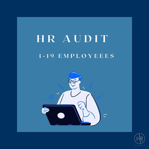 HR Audit   1-19 Employees