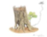 樟之樹.PNG
