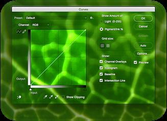 green curve.png