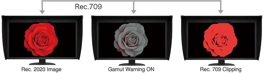 cg319x-gamut-warning.jpg