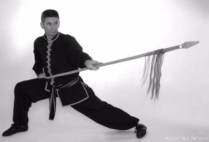Stephane Dubus Kungfu