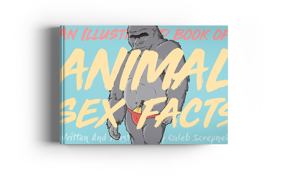 Book Cover Mockup.png