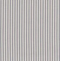 Living Sea - Antarctic Grey