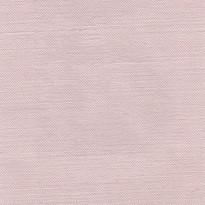 Columbus - Rosa Canina
