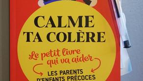 Calme ta colère :  le petit livre qui va aider les parents d'enfants précoces