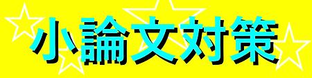 小論文対策banner.png