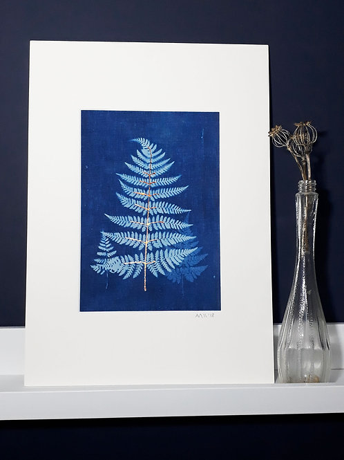 Fern Cyanotype on fabric