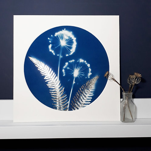 Allium and Fern Cyanotype on fabric