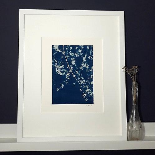 Stickyweeds Cyanotype on fabric