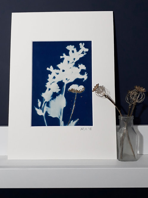 Wild Flower Cyanotype on fabric