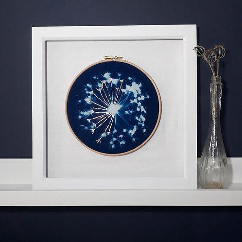 Allium Embroidery Hoop Cyanotype
