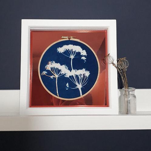 Cowparsley Embroidery Hoop Cyanotype