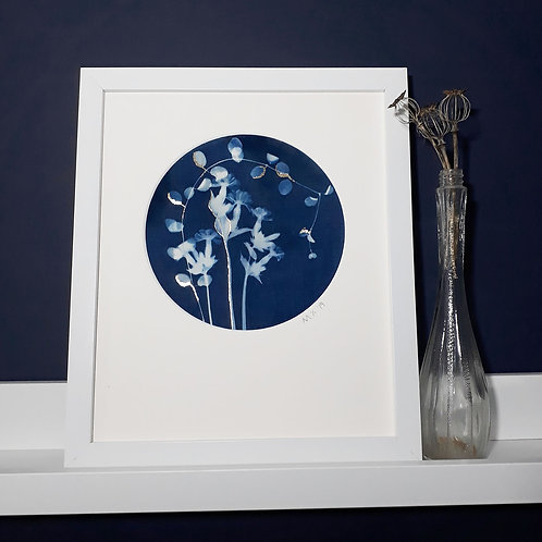 Ragged Robin Flower Cyanotype on fabric