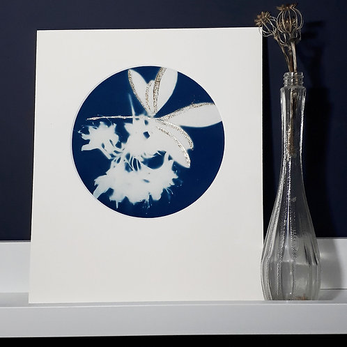 Rhododendron Cyanotype on fabric