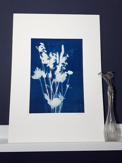 Wild Flower Cyanotype on fabric