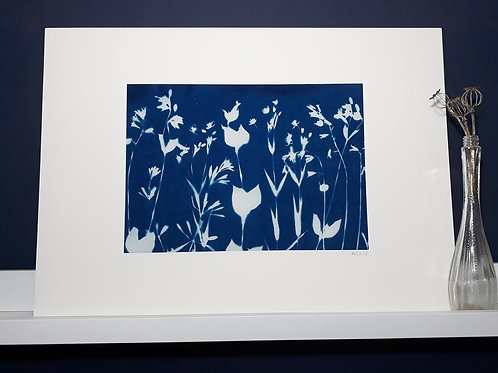 Bluebell Woods Cyanotype on fabric