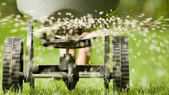 When is the best time to fertiliser your lawn