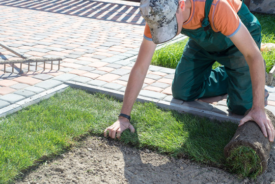 Why should you use Ready Lawn