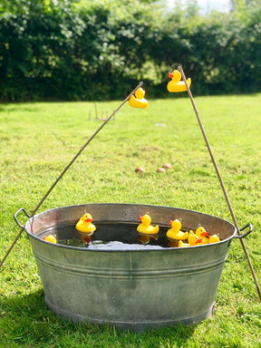 Hook a duck