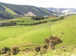 Glenomaru Valley.jpeg