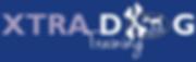 xd training logo.png