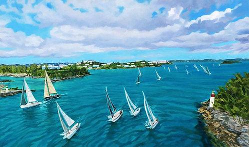 Bermuda Aerial I
