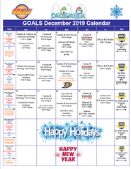 dec goals cal 2019.png