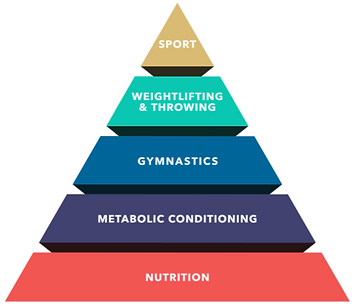 Theoretical Hierarchy of Athlete.png