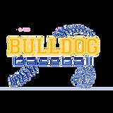 Blue Baltic Baseball design.png
