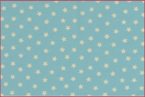 Sterne 1cm türkis weiß Jersey Baumwolljersey Meterware
