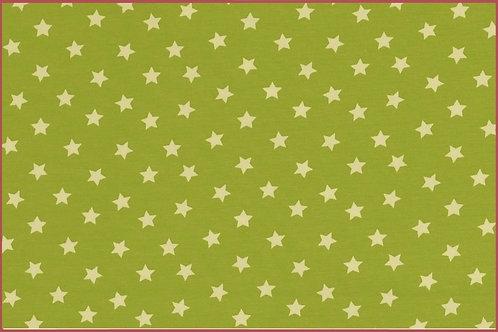 Sterne 1cm hellgrün weiß Jersey Baumwolljersey Meterware