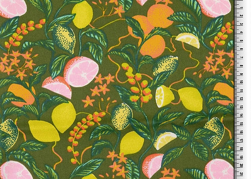 Baumwolle Twill laminiert Zitrusfrüchte auf oliv wasserabweisend