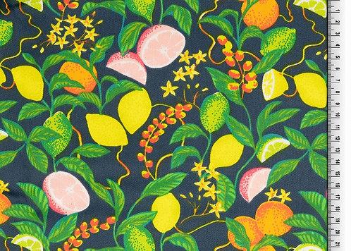 Baumwolle Twill laminiert Zitrusfrüchte auf dunkelgrün wasserabweisend