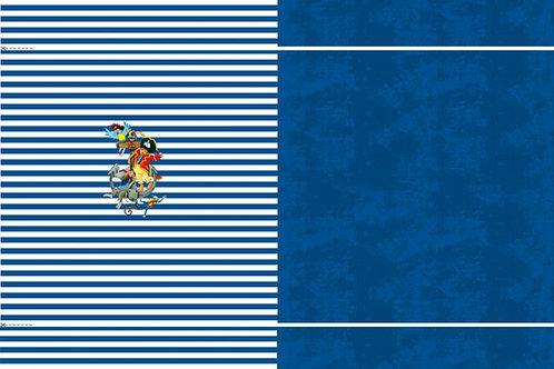 Pirat Capt´n Sharky Streifen Ringel blau Panel Jersey Baumwolljersey