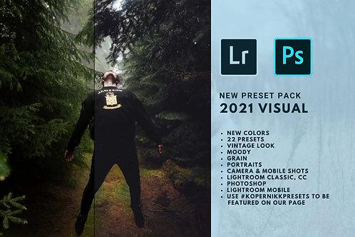 2021Visual LR presets