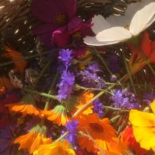 Récolte fleurie