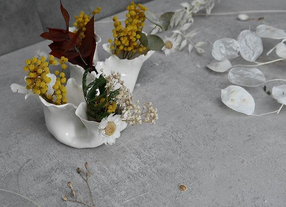 Vase Bouture Moi