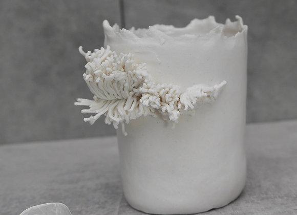 Photophore Lichen
