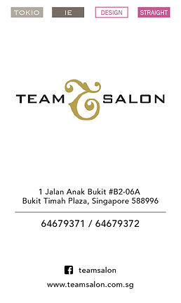 Team Salon - Bkt.jpg