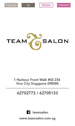 Team Salon - Vivo.jpg