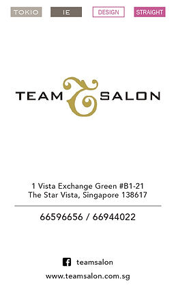 Team Salon - The Star.jpg