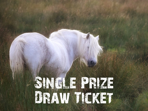 Single Prize Draw Ticket