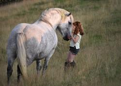 Lagalgarve Nguarhoe Highland Pony Mare