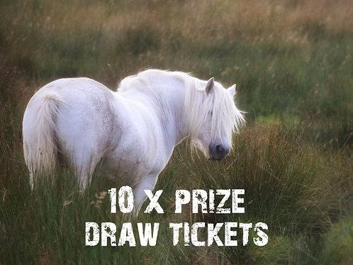 10 x Prize Draw Tickets
