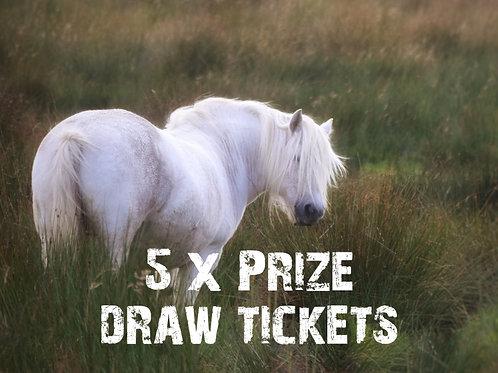 5 x Prize Draw Tickets