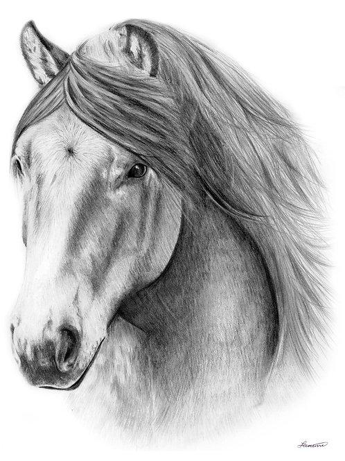 Balmoral Beacon A3 Mounted Art Print by Sammi Wuidart