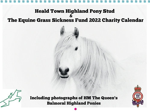 2022 Charity Calendar