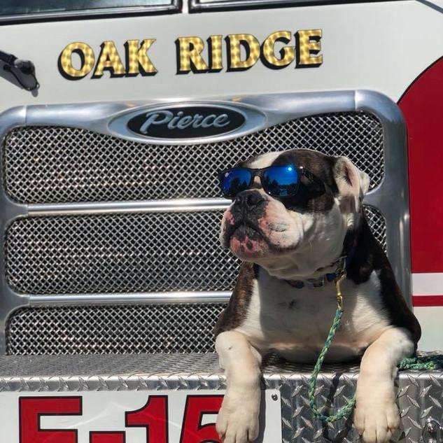 fire truck henry.jpg
