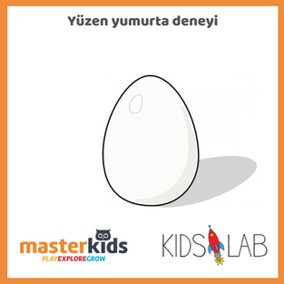 Yüzen Yumurta Deneyi