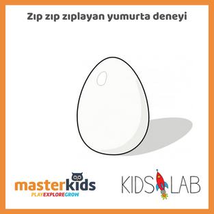 Zıp Zp Zıplayan Yumurta Deneyi